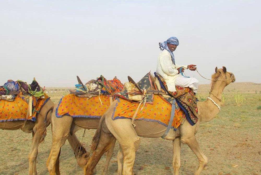 ท่องเที่ยวขี่อูฐทะเลทรายในประเทศอินเดีย